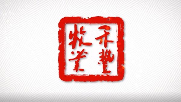 心途·二十年——禾丰牧业成立二十周年宣传片