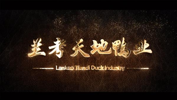 品牌与营销宣传大赛一等奖:兰考天地鸭业宣传片