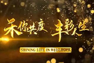 Shining Life in Wellhope