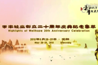 Highlights of Wellhope's 20th Anniversary Celebration
